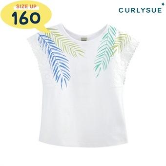 [컬리수] 소매레이스 티셔츠 COM2GATS05 [여름]